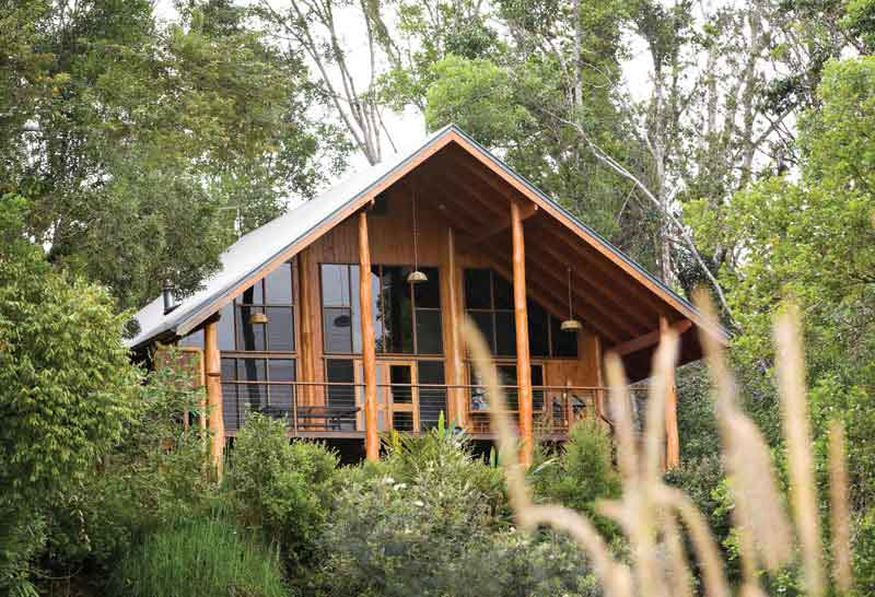 Canopy Treehouses Stay In A Treehouse In The Rainforest