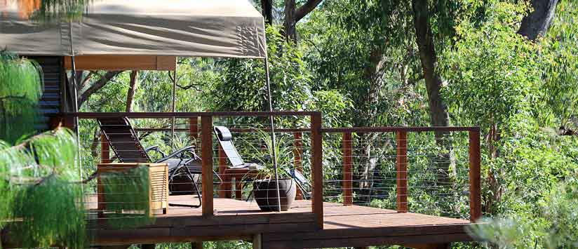 the escape south-coast-glamping