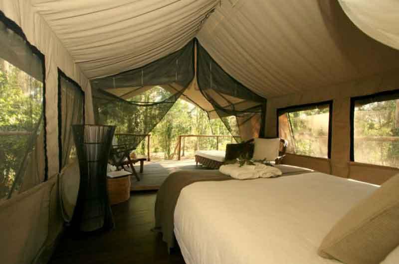Paperbark-camp-inside