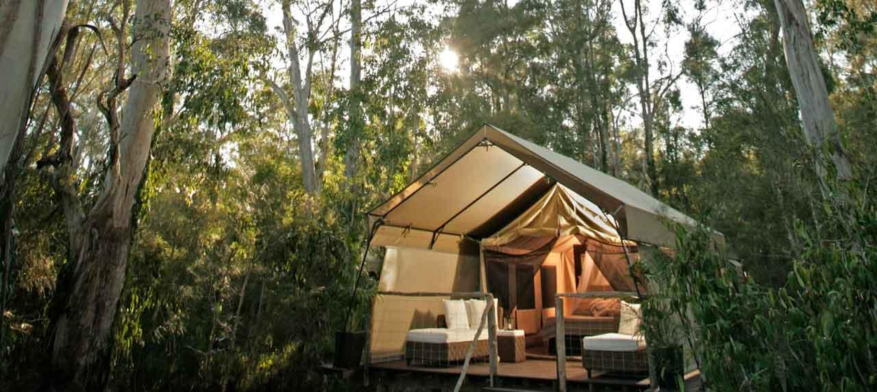 glamping-paperbark-camp