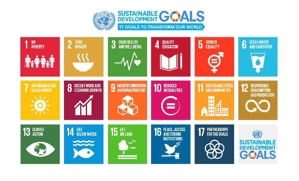 Year of Sustainable Development