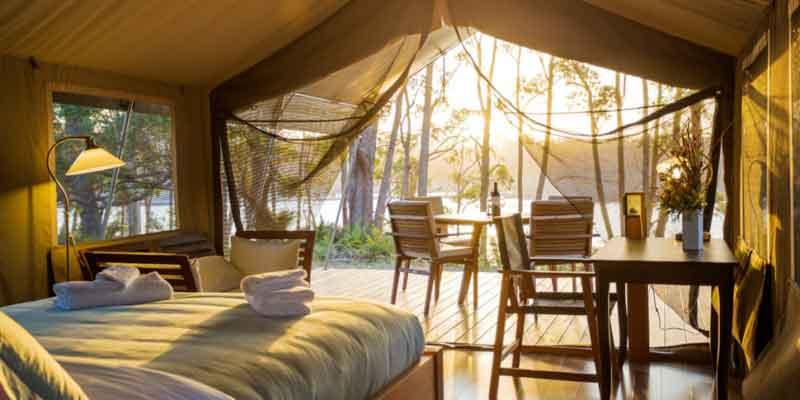 Tanja-Lagoon-Camp-Melaleuca-Safari-Tent-.jpg