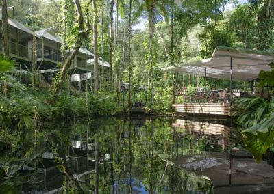 Daintree Eco Lodge and Spa, Qld