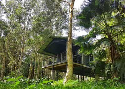 Diamond Waters Treehouse Retreat, NSW