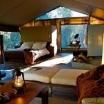 Nightfall Wilderness camp interior