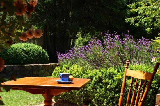 Redbrow Garden Guesthouse Bed And Breakfast