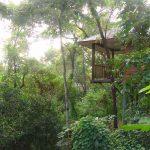 Thala beach bungalow-exterior