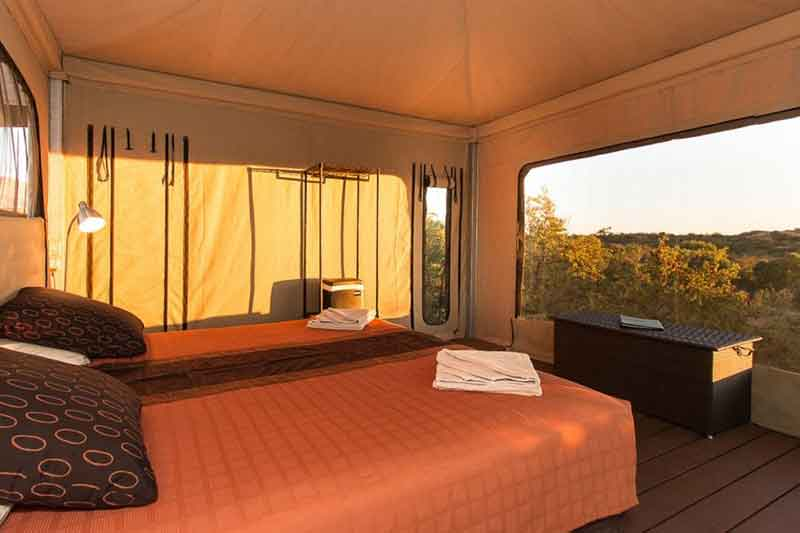 safari-tent-internal