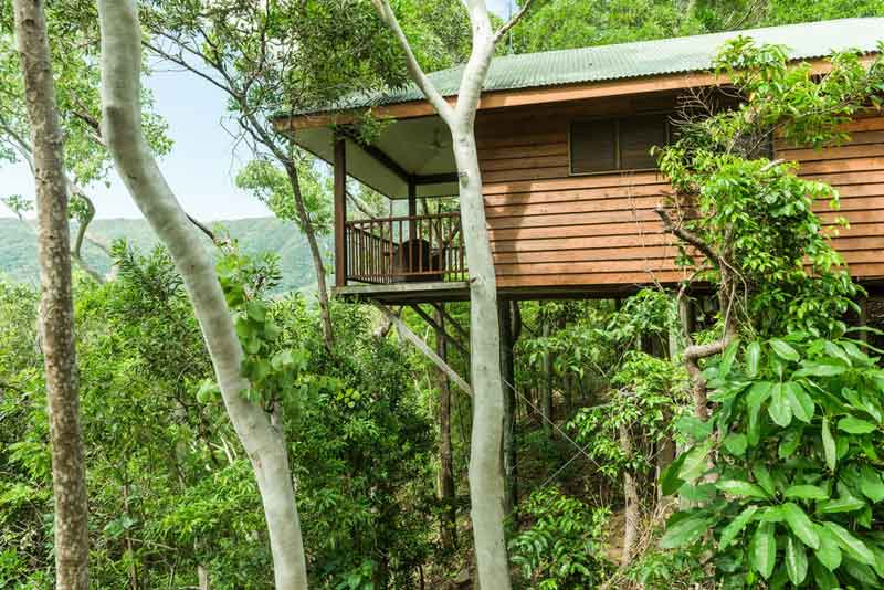 thala-beach-treehouse