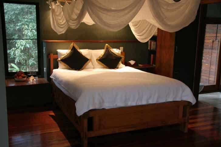 Lyola bed