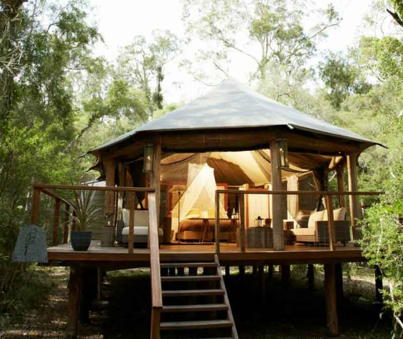 paperbark camp king deluxe