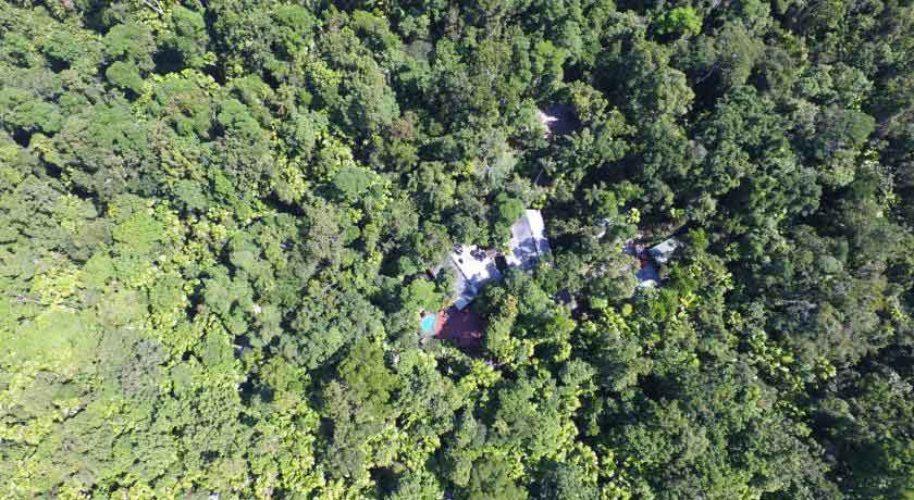 Daintree-wilderness-lodge-aerial