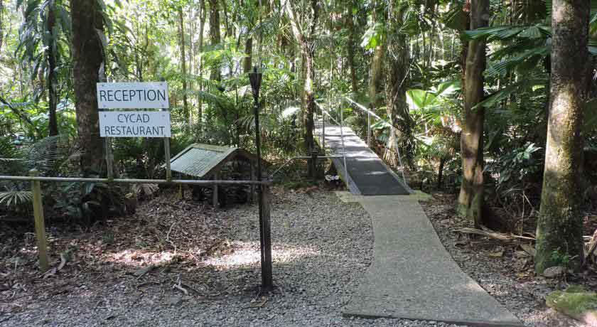Daintree-wilderness-lodge-exterior