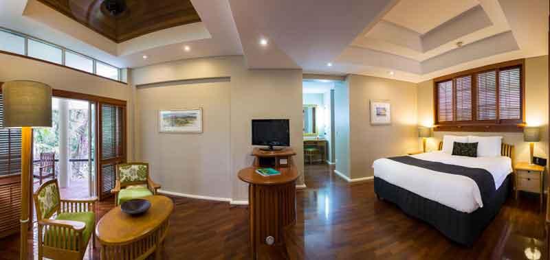 reef suite