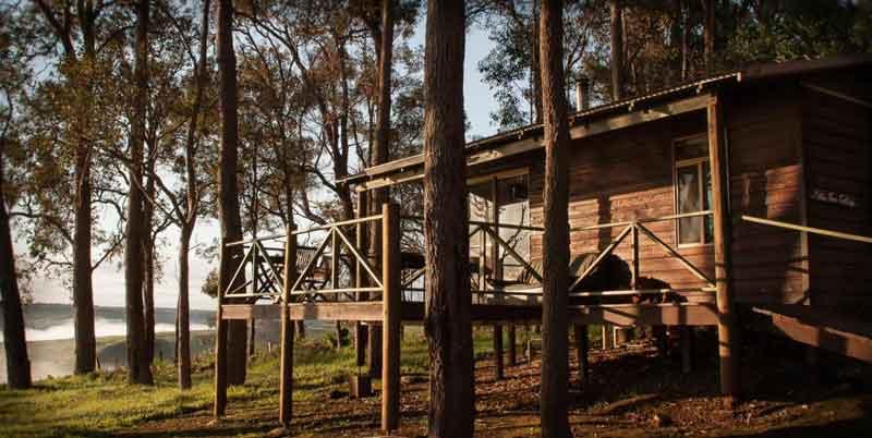 Balingup-Heights-Hilltop-Forest-Cottages-external