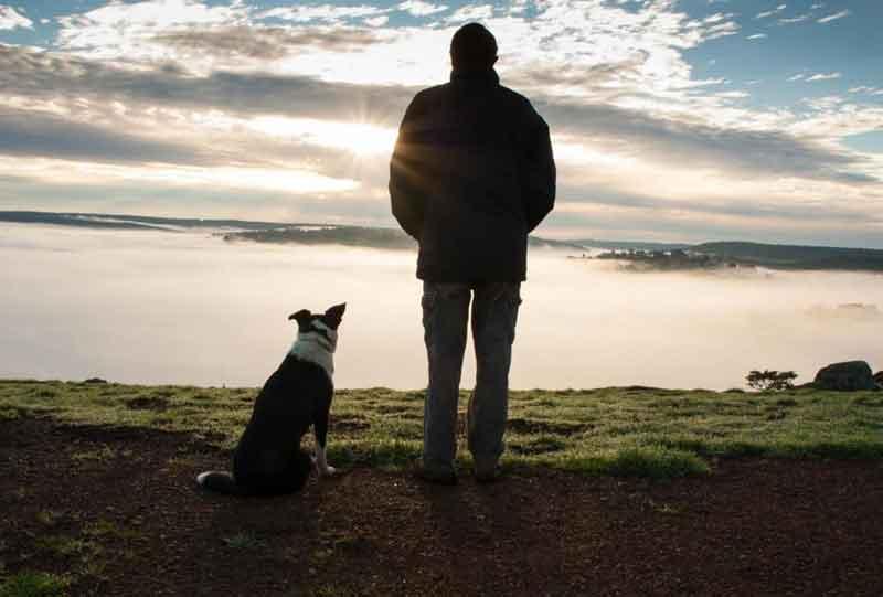 Balingup-Heights-Hilltop-Forest-Cottages-man-dog