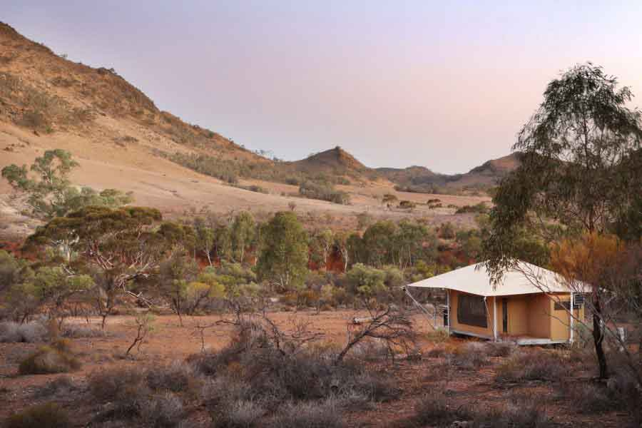 Flinders-Bush-retreats-landscape